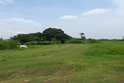 property for sale along aguinaldo highway in Dasmariñas Cavite